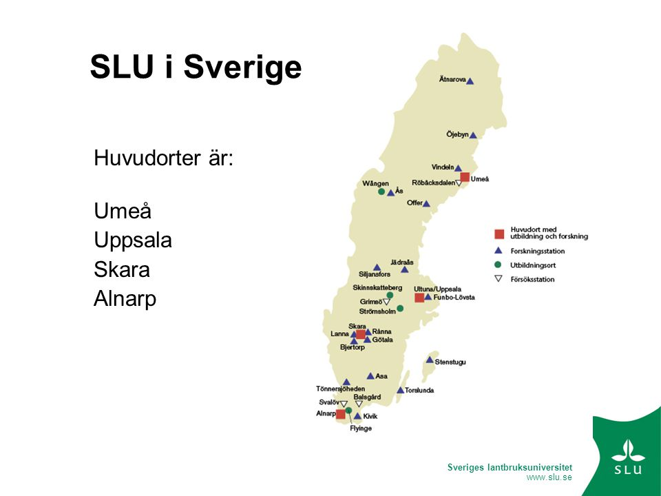 Sveriges lantbruksuniversitet www.slu.se SLU i Sverige Huvudorter är: Umeå Uppsala Skara Alnarp