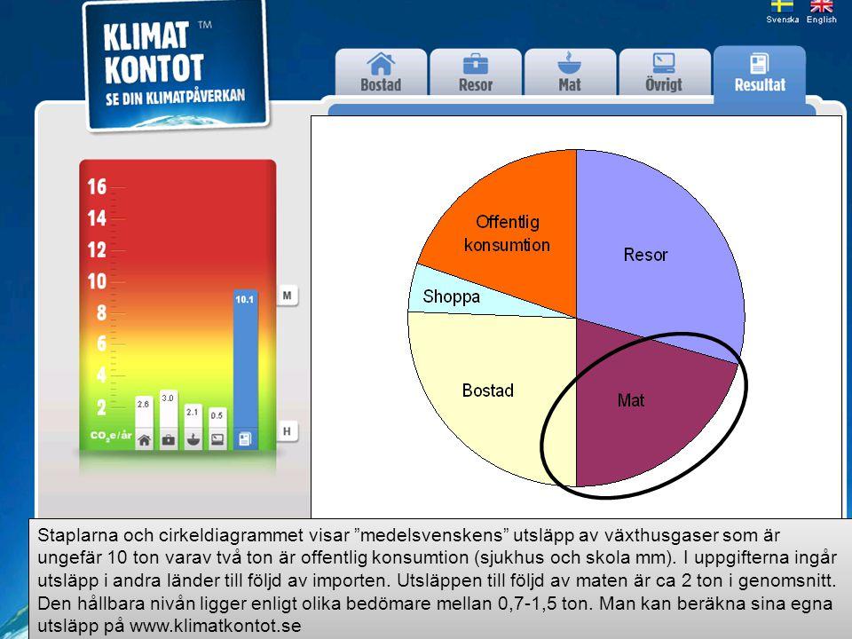 """Staplarna och cirkeldiagrammet visar """"medelsvenskens"""" utsläpp av växthusgaser som är ungefär 10 ton varav två ton är offentlig konsumtion (sjukhus och"""