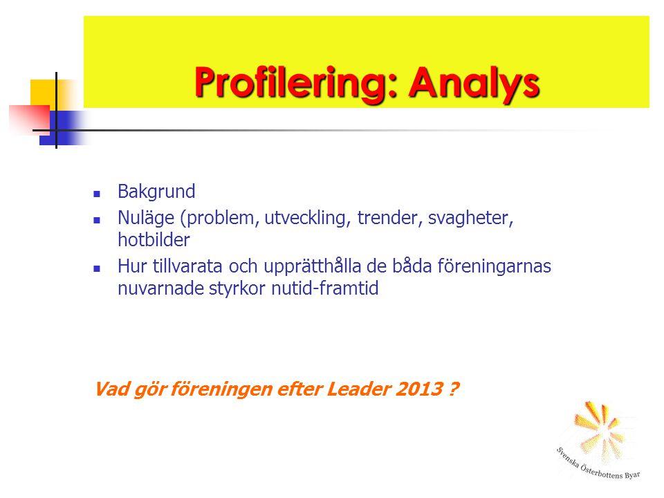 Profilering: Analys Bakgrund Nuläge (problem, utveckling, trender, svagheter, hotbilder Hur tillvarata och upprätthålla de båda föreningarnas nuvarnade styrkor nutid-framtid Vad gör föreningen efter Leader 2013