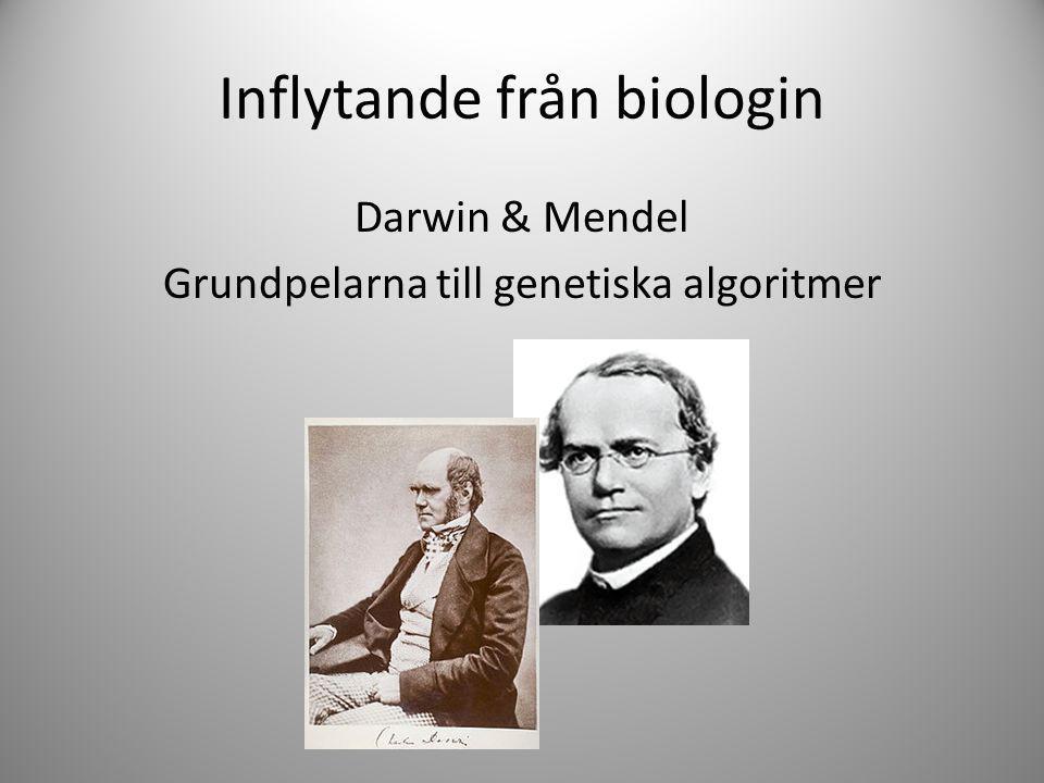 Inflytande från biologin Darwin & Mendel Grundpelarna till genetiska algoritmer