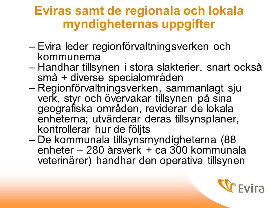 Eviras samt de regionala och lokala myndigheternas uppgifter –Evira leder regionförvaltningsverken och kommunerna –Handhar tillsynen i stora slakterier, snart också små + diverse specialområden –Regionförvaltningsverken, sammanlagt sju verk, styr och övervakar tillsynen på sina geografiska områden, reviderar de lokala enheterna; utvärderar deras tillsynsplaner, kontrollerar hur de följts –De kommunala tillsynsmyndigheterna (88 enheter – 280 årsverk + ca 300 kommunala veterinärer) handhar den operativa tillsynen