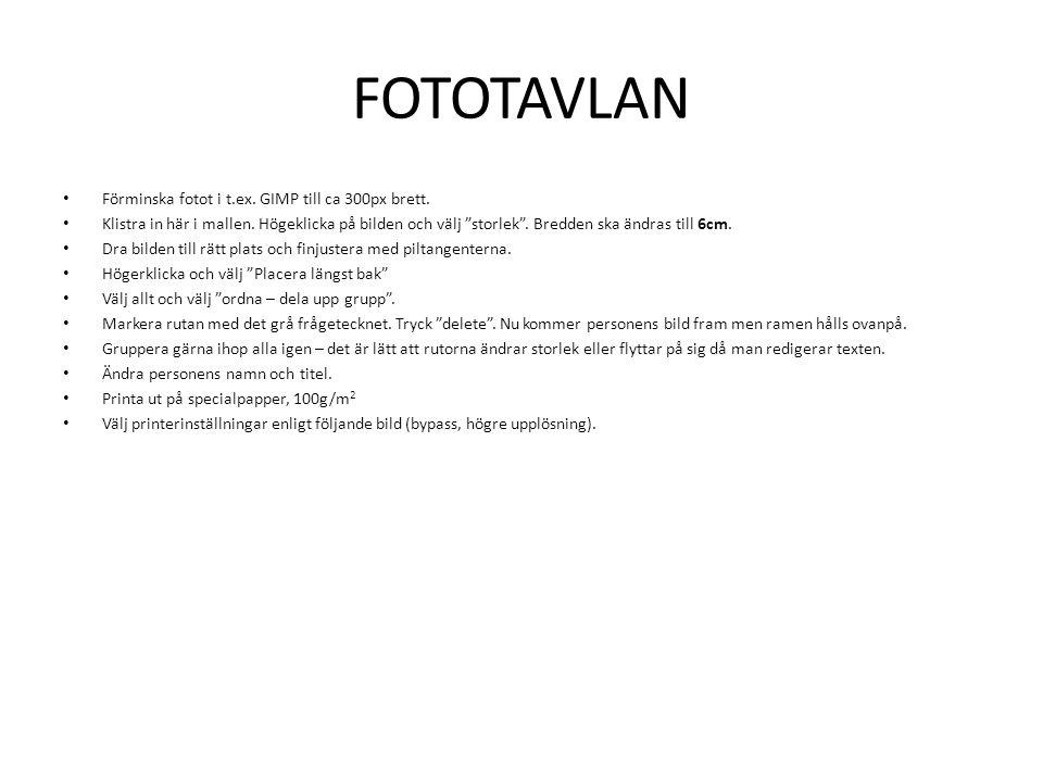 FOTOTAVLAN Förminska fotot i t.ex. GIMP till ca 300px brett.