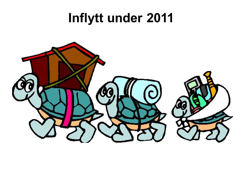 Inflytt under 2011