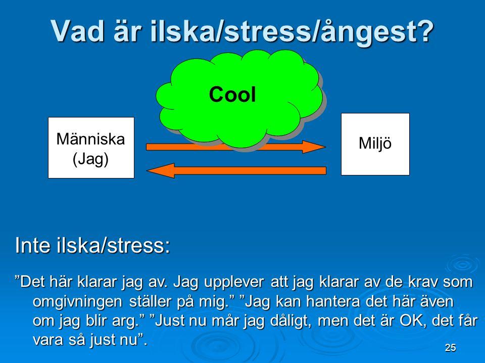"""Vad är ilska/stress/ångest? Människa (Jag) Miljö Cool Cool Inte ilska/stress: """"Det här klarar jag av. Jag upplever att jag klarar av de krav som omgiv"""