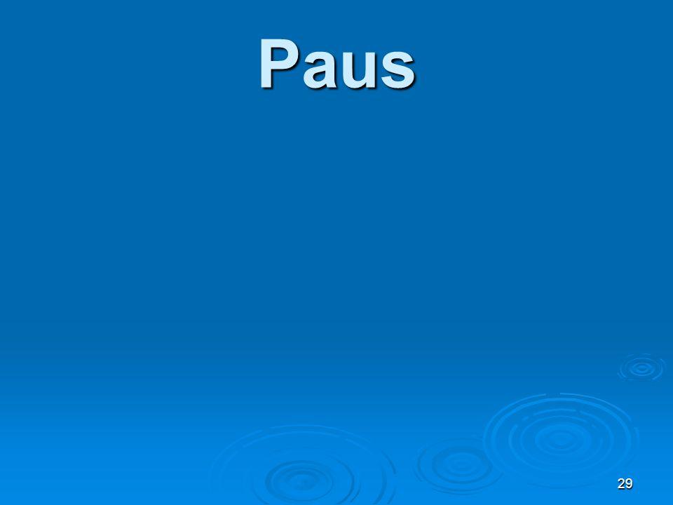 Paus 29