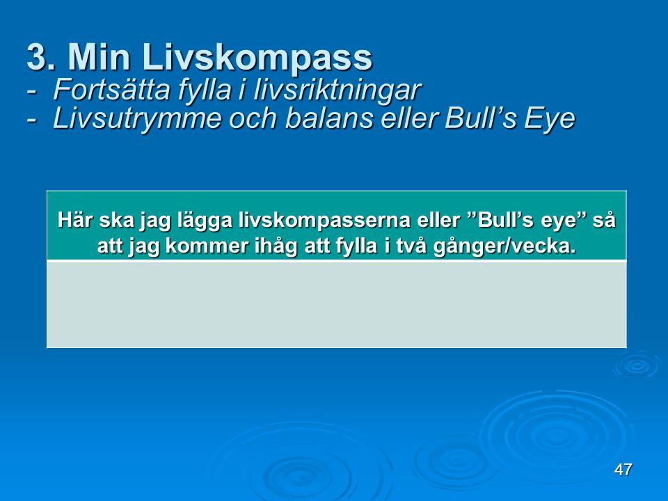 """3. Min Livskompass - Fortsätta fylla i livsriktningar - Livsutrymme och balans eller Bull's Eye Här ska jag lägga livskompasserna eller """"Bull's eye"""" s"""