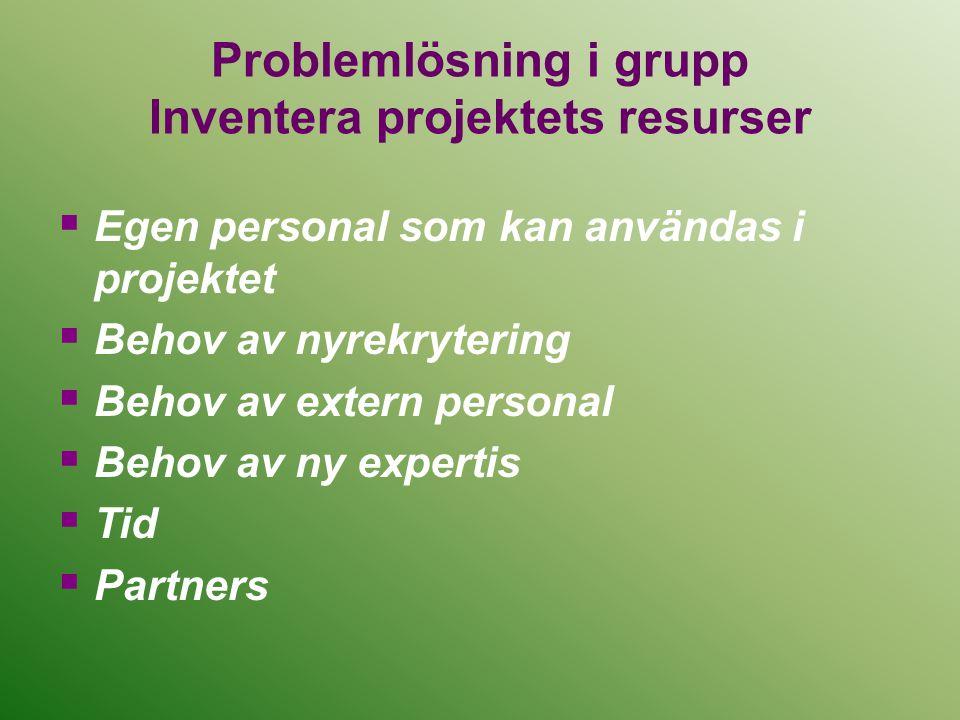Problemlösning i grupp Inventera projektets resurser  Egen personal som kan användas i projektet  Behov av nyrekrytering  Behov av extern personal