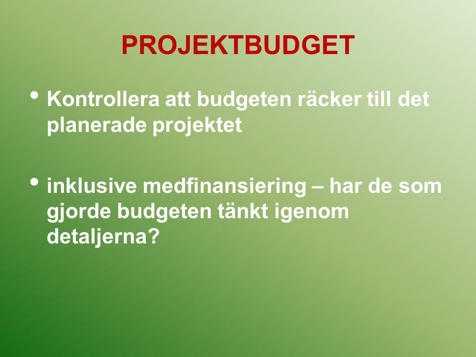 PROJEKTBUDGET Kontrollera att budgeten räcker till det planerade projektet inklusive medfinansiering – har de som gjorde budgeten tänkt igenom detalje