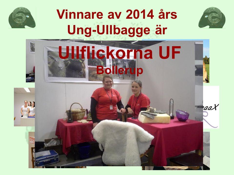 Vinnare av 2014 års Ung-Ullbagge är Ullflickorna UF Bollerup