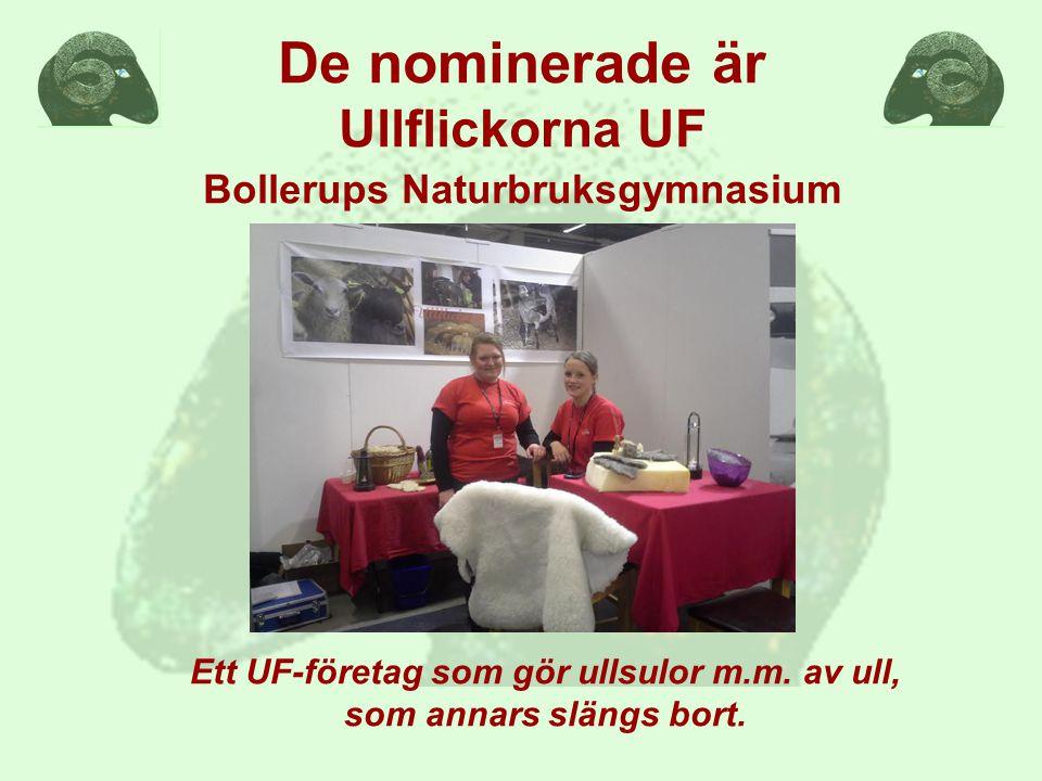 De nominerade är Ullflickorna UF Bollerups Naturbruksgymnasium Ett UF-företag som gör ullsulor m.m.