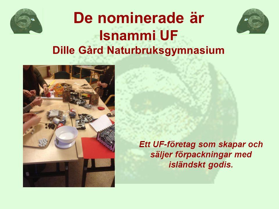 Ett UF-företag som skapar och säljer förpackningar med isländskt godis.