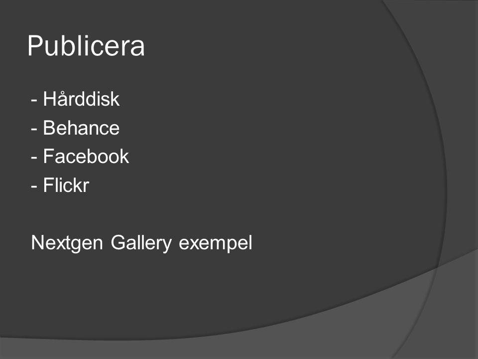 Publicera - Hårddisk - Behance - Facebook - Flickr Nextgen Gallery exempel