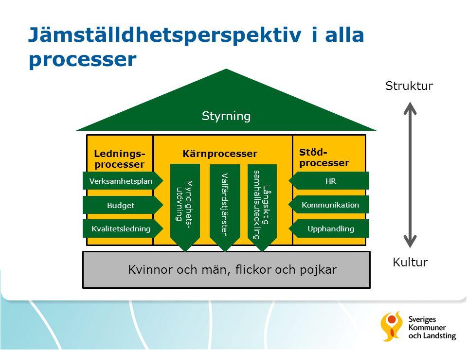 Kärnprocesser Kvinnor och män, flickor och pojkar Stöd- processer Lednings- processer Struktur Kultur Verksamhetsplan Budget Kvalitetsledning HR Kommunikation Upphandling Myndighets- utövning Välfärdstjänster Långsiktig samhällsuteckling Styrning Jämställdhetsperspektiv i alla processer