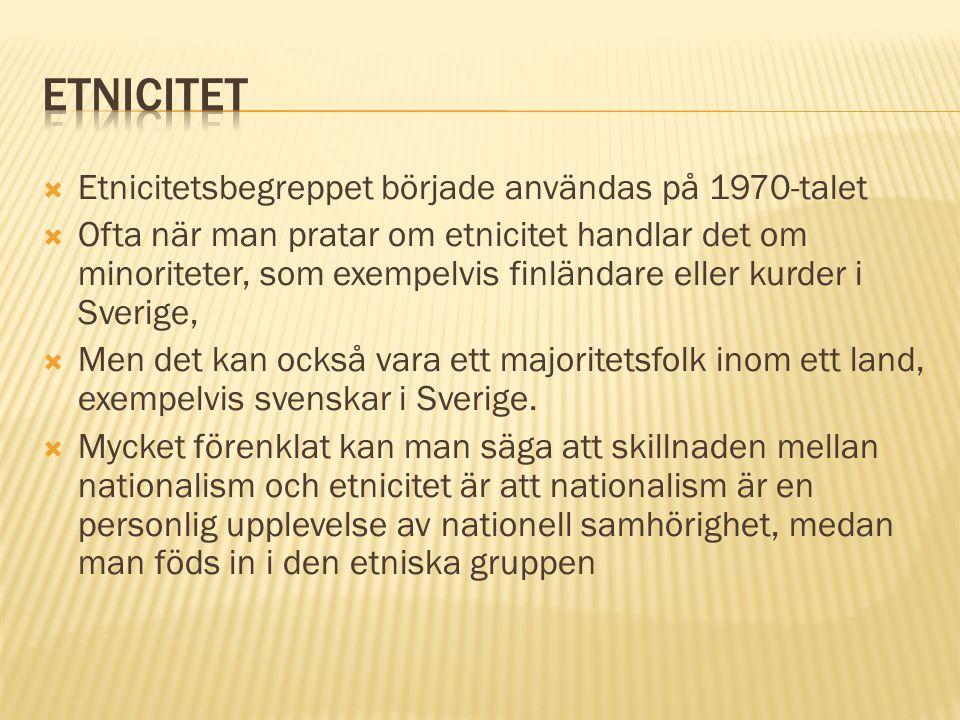  Etnicitetsbegreppet började användas på 1970-talet  Ofta när man pratar om etnicitet handlar det om minoriteter, som exempelvis finländare eller ku