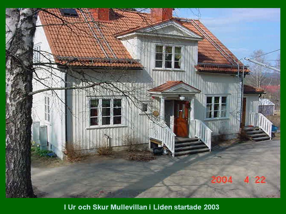 I Ur och Skur Mullevillan i Liden startade 2003