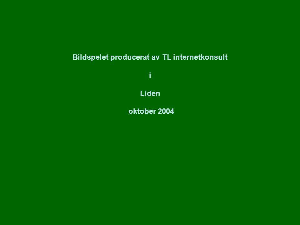 Bildspelet producerat av TL internetkonsult i Liden oktober 2004