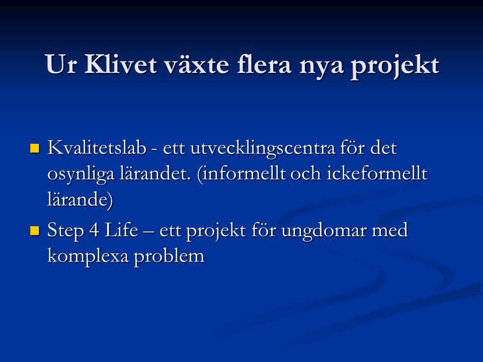 Ur Klivet växte flera nya projekt Kvalitetslab - ett utvecklingscentra för det osynliga lärandet.