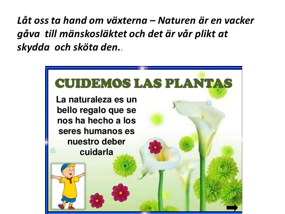 Låt oss ta hand om växterna – Naturen är en vacker gåva till mänskosläktet och det är vår plikt at skydda och sköta den..