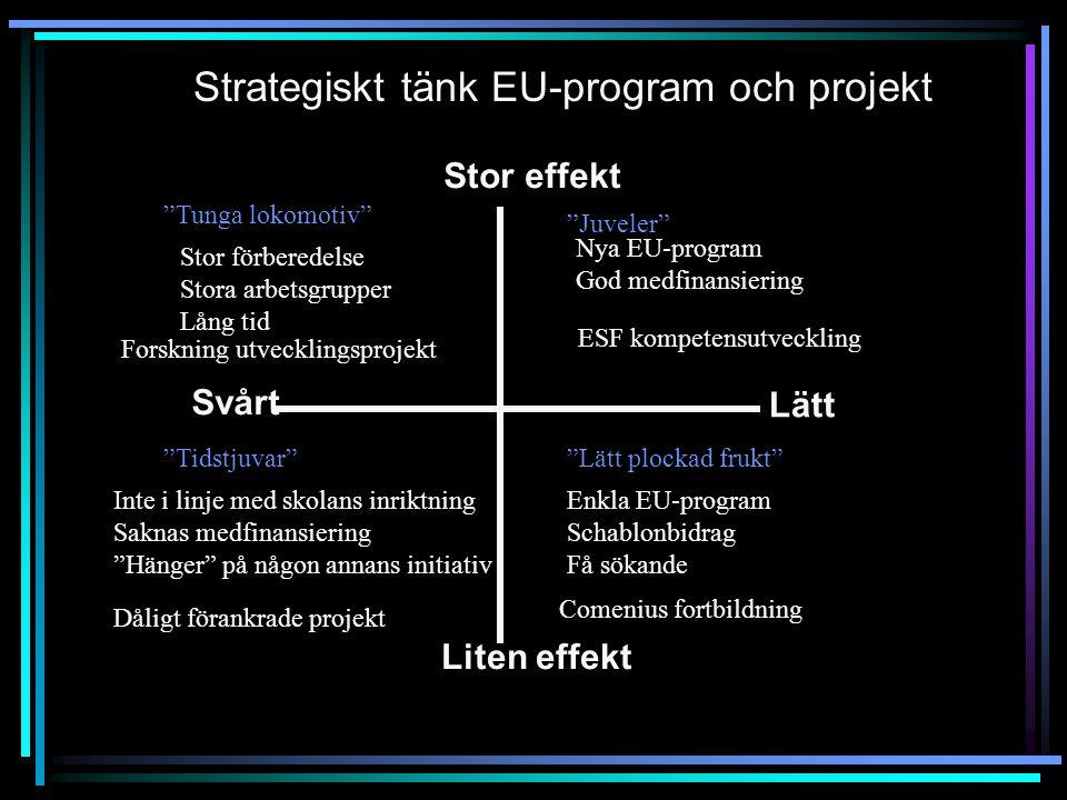 """Stor effekt Lätt Svårt Liten effekt Strategiskt tänk EU-program och projekt """"Tunga lokomotiv"""" """"Tidstjuvar"""" """"Juveler"""" """"Lätt plockad frukt"""" Stor förbere"""