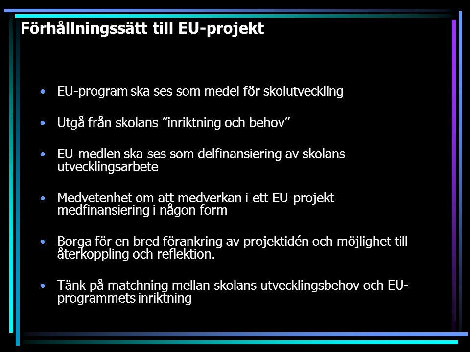"""Förhållningssätt till EU-projekt EU-program ska ses som medel för skolutveckling Utgå från skolans """"inriktning och behov"""" EU-medlen ska ses som delfin"""