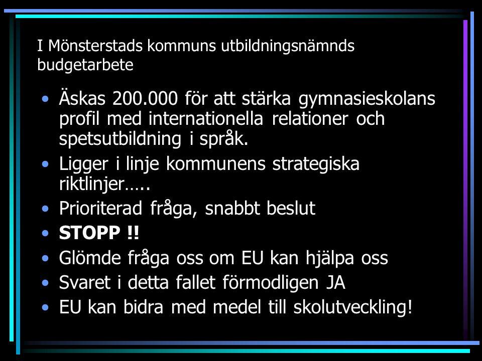 I Mönsterstads kommuns utbildningsnämnds budgetarbete Äskas 200.000 för att stärka gymnasieskolans profil med internationella relationer och spetsutbi