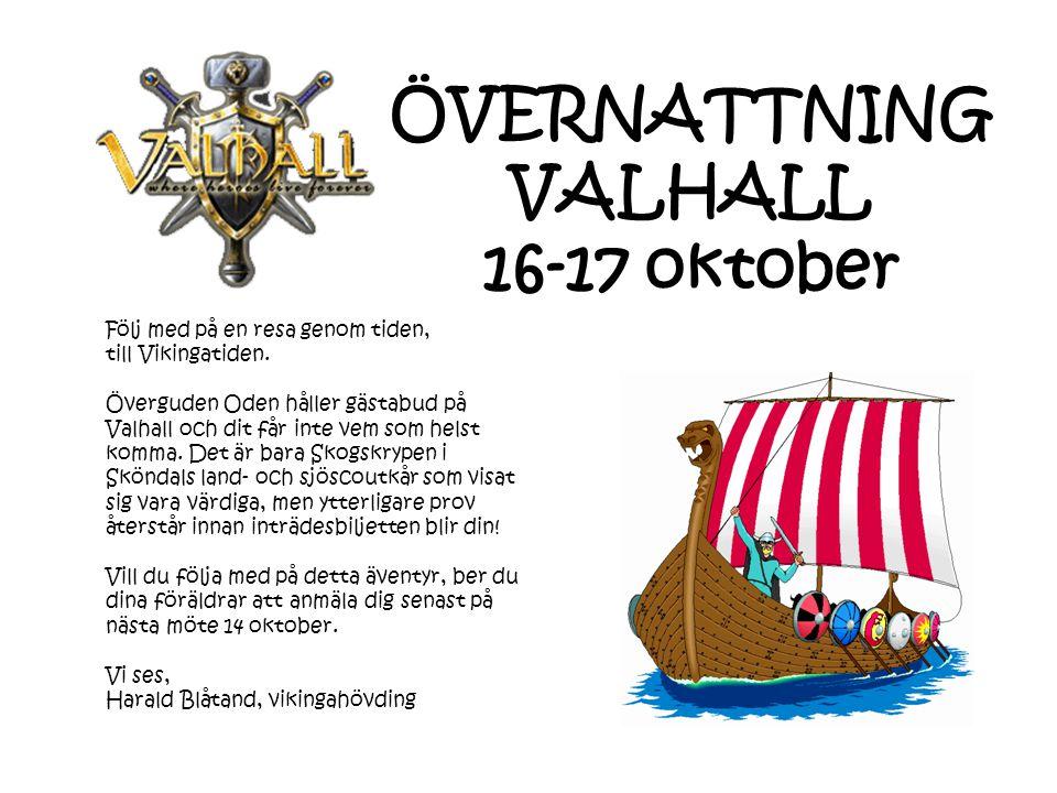 Följ med på en resa genom tiden, till Vikingatiden.