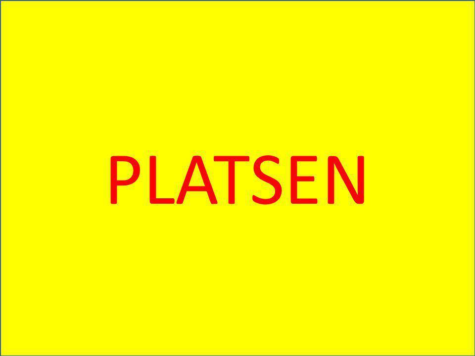 PLATSEN