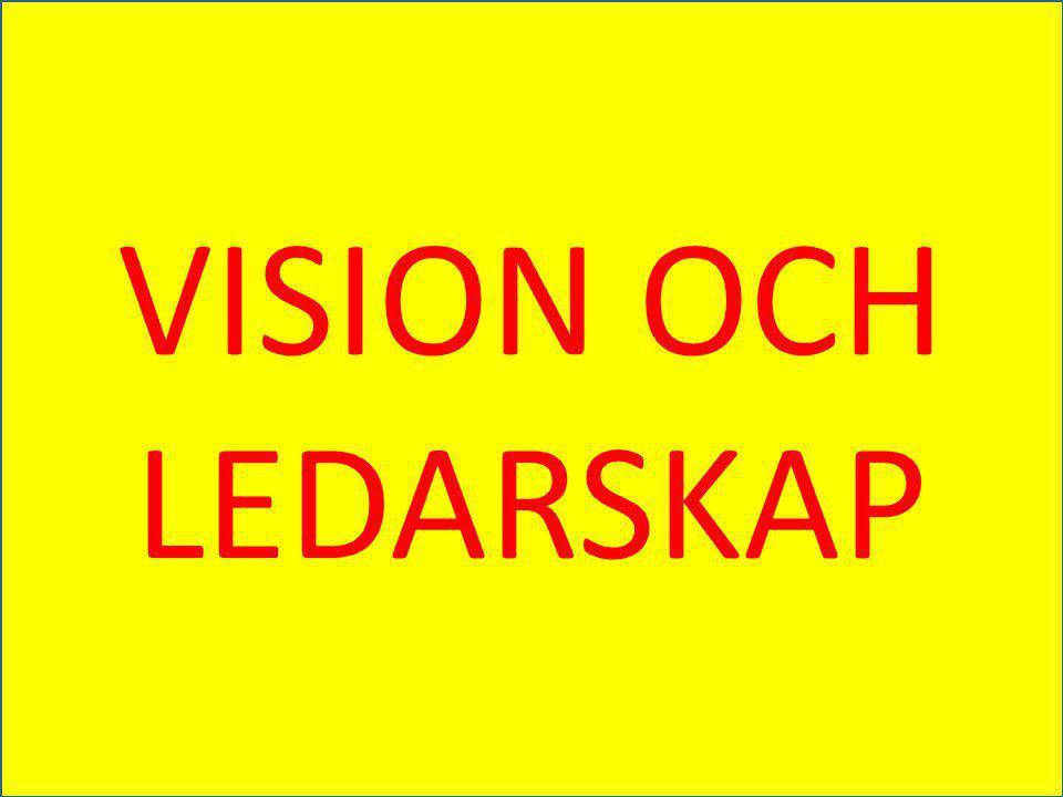 VISION OCH LEDARSKAP