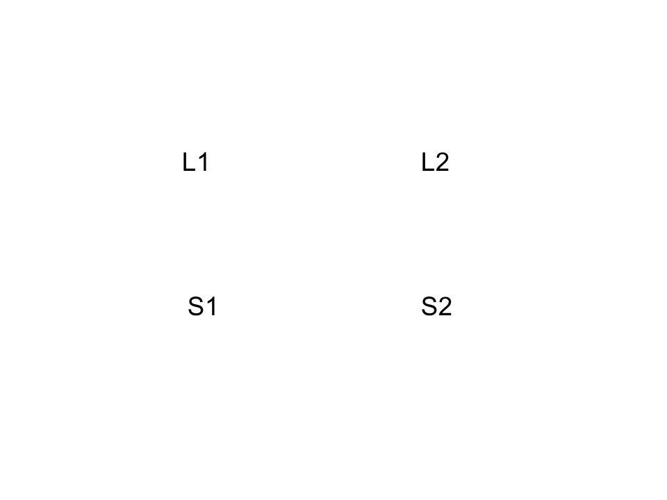 L2 S2 L1 S1