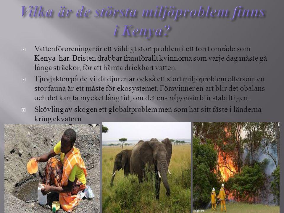  Vattenföroreningar är ett väldigt stort problem i ett torrt område som Kenya har. Bristen drabbar framförallt kvinnorna som varje dag måste gå långa