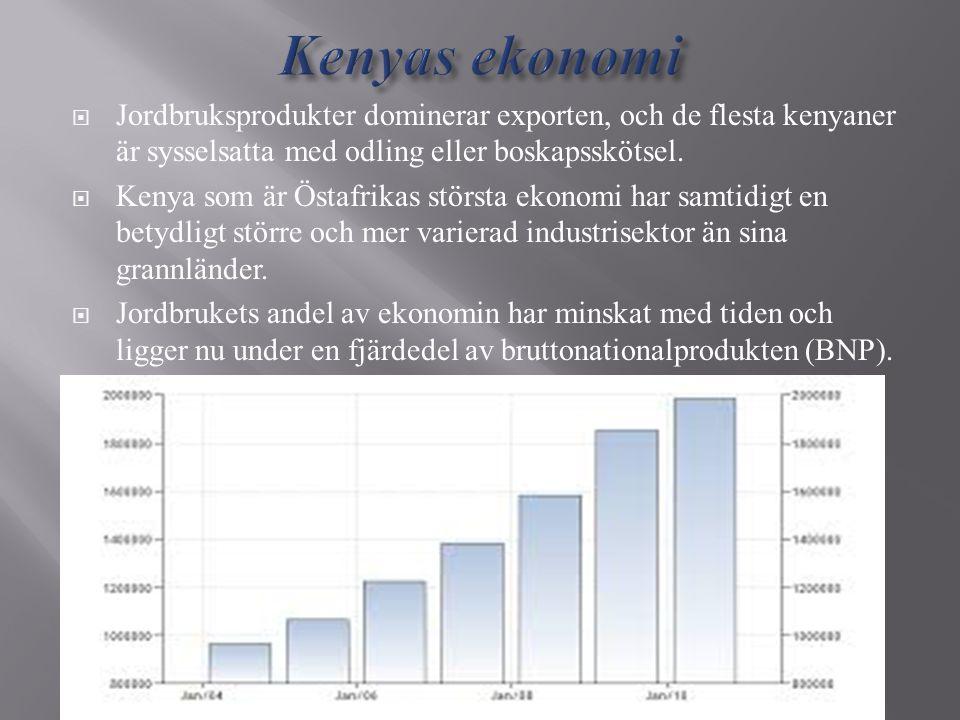  Jordbruksprodukter dominerar exporten, och de flesta kenyaner är sysselsatta med odling eller boskapsskötsel.  Kenya som är Östafrikas största ekon