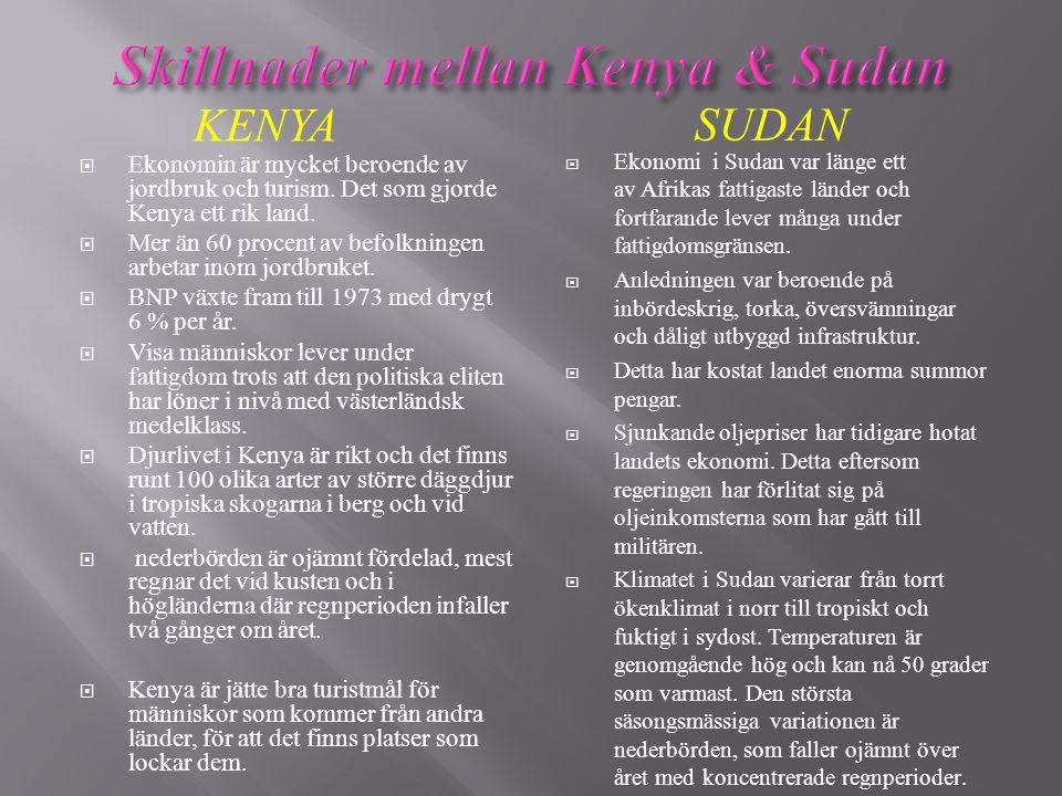 KENYA SUDAN  Ekonomin är mycket beroende av jordbruk och turism. Det som gjorde Kenya ett rik land.  Mer än 60 procent av befolkningen arbetar inom