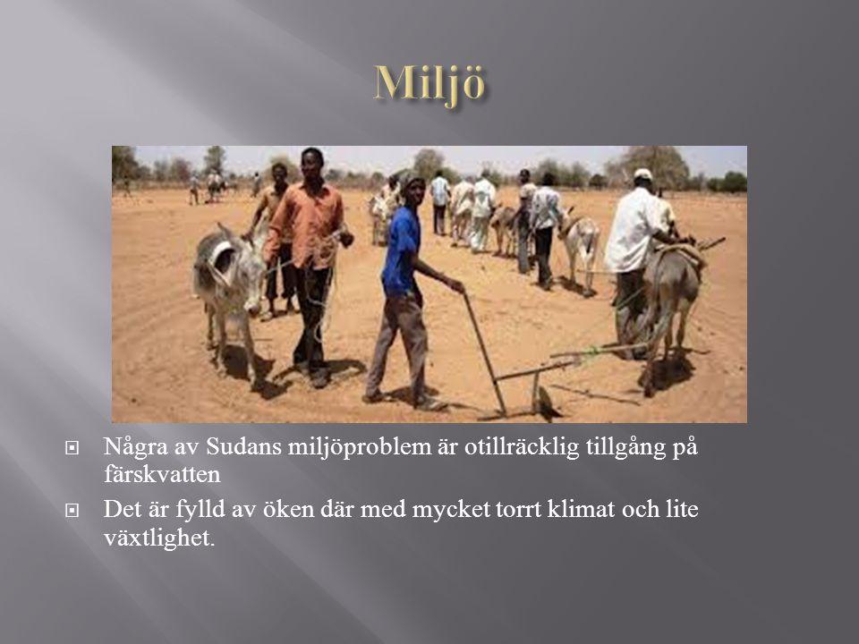  Några av Sudans miljöproblem är otillräcklig tillgång på färskvatten  Det är fylld av öken där med mycket torrt klimat och lite växtlighet.