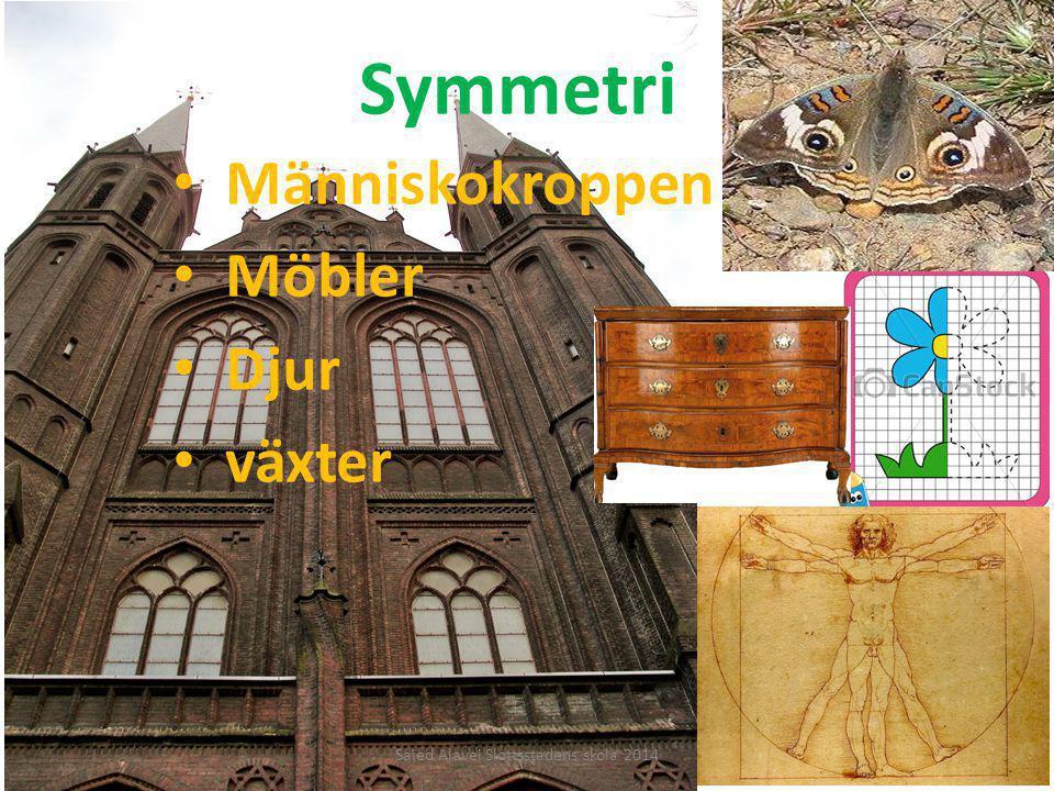 Symmetri Människokroppen Möbler Djur växter Saied Alavei Slottsstadens skola 2014