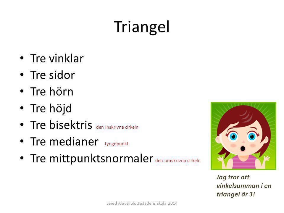 Triangel Tre vinklar Tre sidor Tre hörn Tre höjd Tre bisektris den inskrivna cirkeln Tre medianer tyngdpunkt Tre mittpunktsnormaler den omskrivna cirk