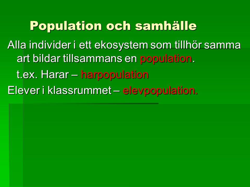 Population och samhälle Alla individer i ett ekosystem som tillhör samma art bildar tillsammans en population. t.ex. Harar – harpopulation t.ex. Harar
