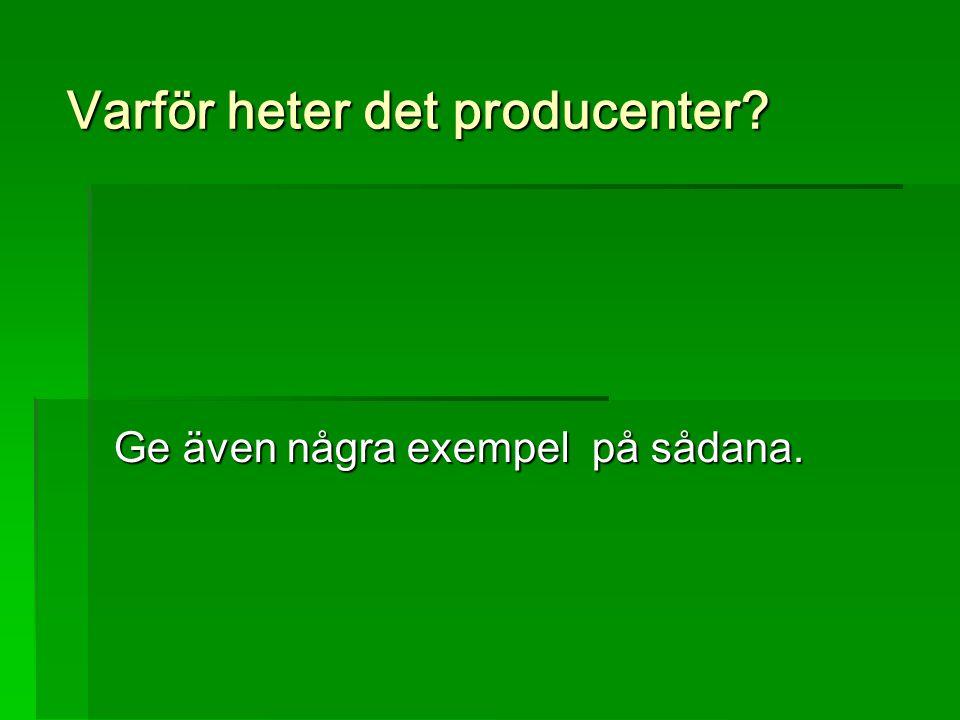 Varför heter det producenter? Ge även några exempel på sådana.