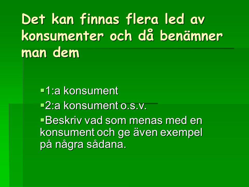 Det kan finnas flera led av konsumenter och då benämner man dem  1:a konsument  2:a konsument o.s.v.  Beskriv vad som menas med en konsument och ge