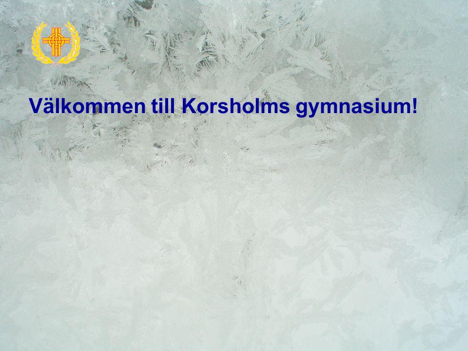 Grundläggande utbildning GymnasiumYrkesinstitut Yrkeshögskola Universitet