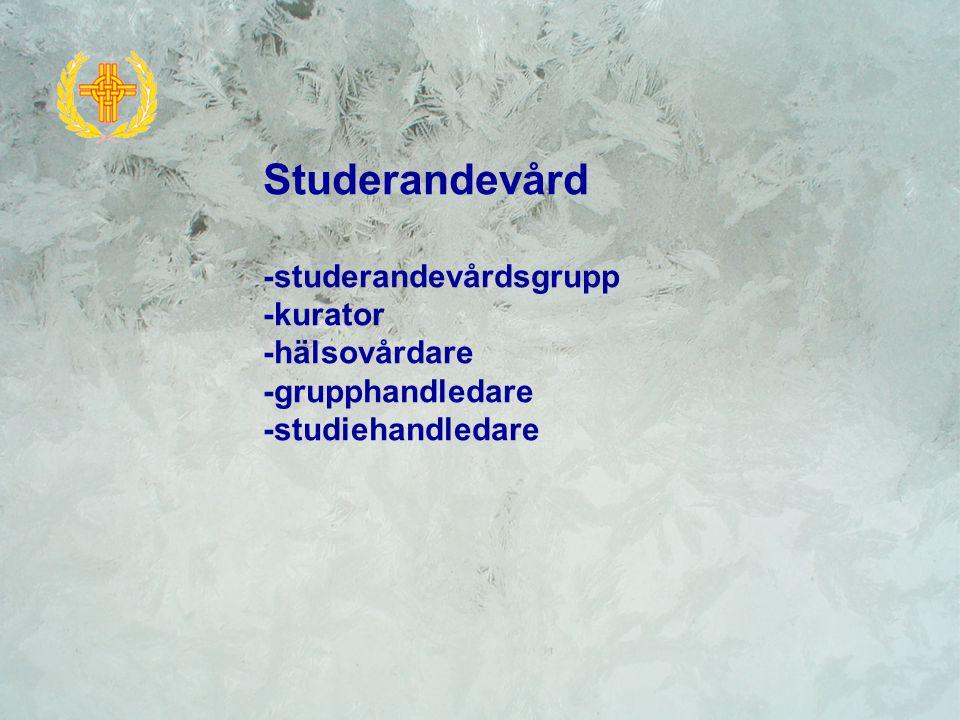 Studerandevård -studerandevårdsgrupp -kurator -hälsovårdare -grupphandledare -studiehandledare