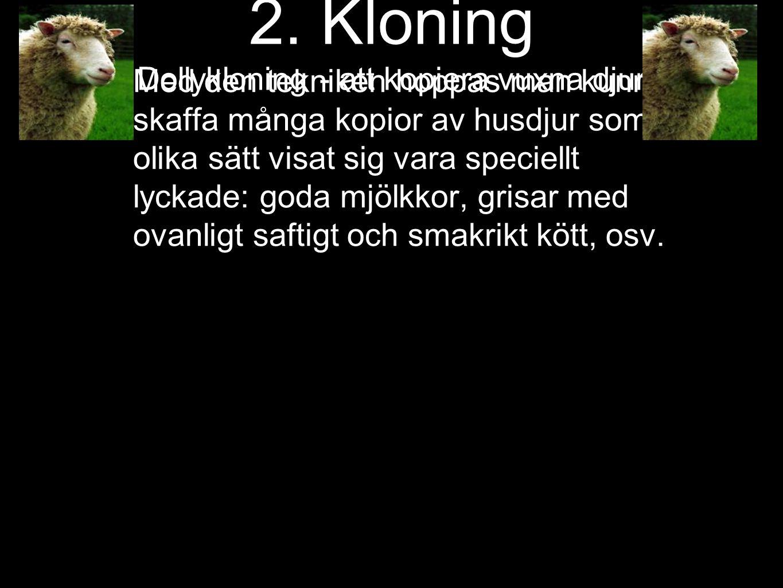 2. Kloning Dollykloning - att kopiera vuxna djur År 1997 lyckades man för första gången klona ett vuxet djur. (men innan dess var det många misslyckan