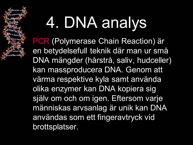 4. DNA analys PCR (Polymerase Chain Reaction) är en betydelsefull teknik där man ur små DNA mängder (hårstrå, saliv, hudceller) kan massproducera DNA.