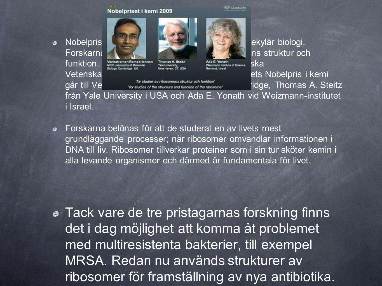 Nobelpriset i kemi går i år till forskare inom molekylär biologi. Forskarna belönas för sina studier av ribosomens struktur och funktion. Nobelstiftel