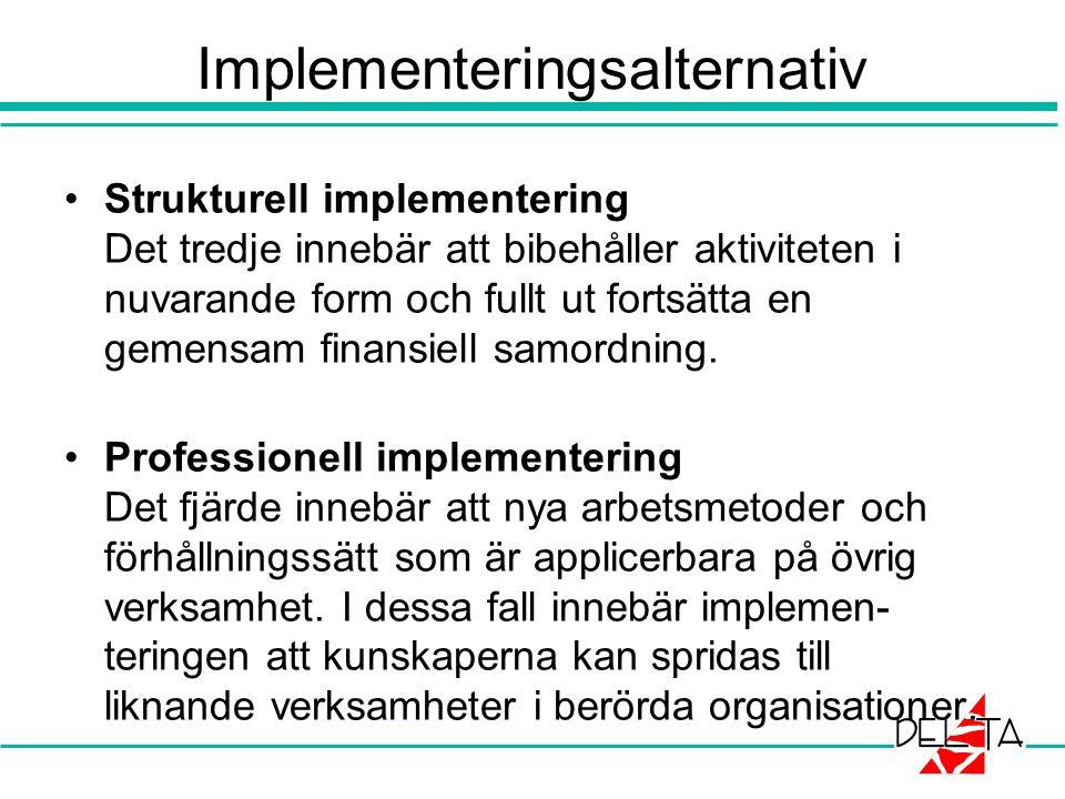 Implementeringsalternativ Strukturell implementering Det tredje innebär att bibehåller aktiviteten i nuvarande form och fullt ut fortsätta en gemensam finansiell samordning.