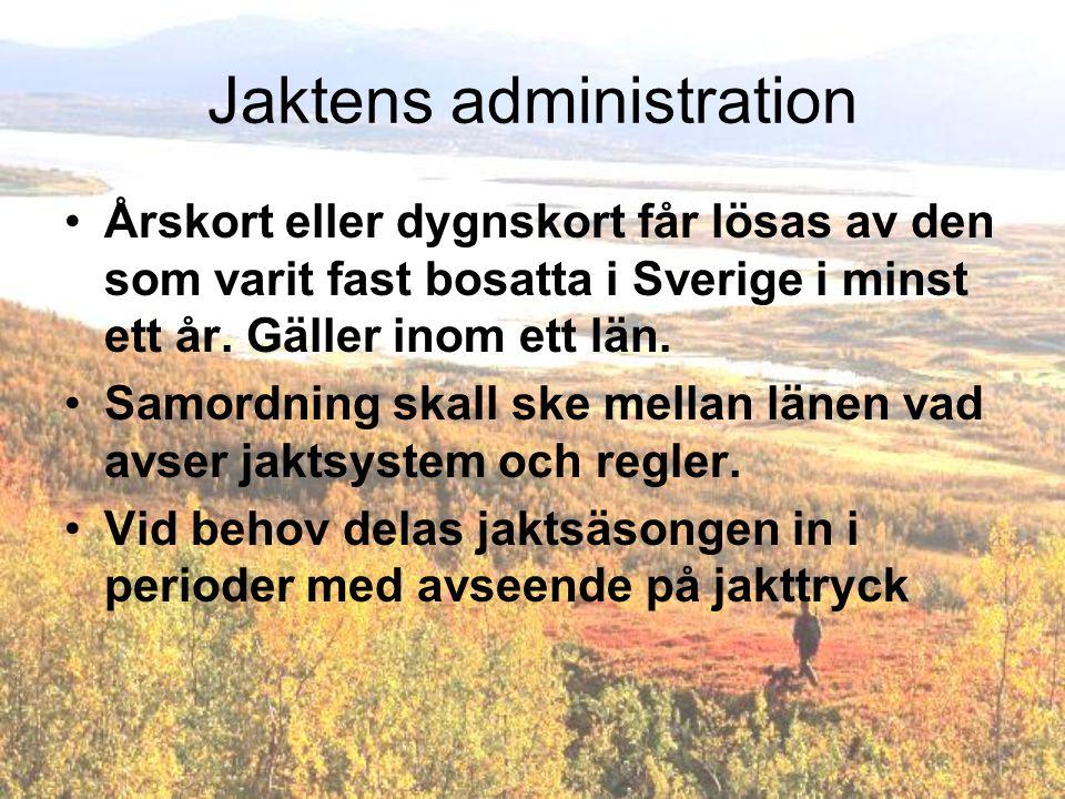 Jaktens administration Årskort eller dygnskort får lösas av den som varit fast bosatta i Sverige i minst ett år.