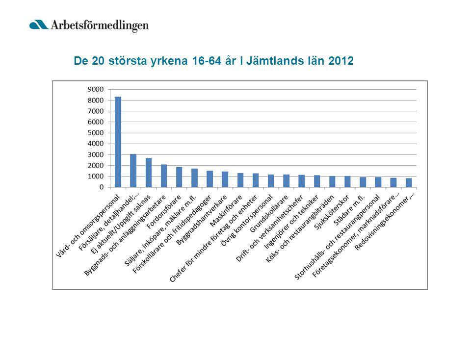 De 20 största yrkena 16-64 år i Jämtlands län 2012