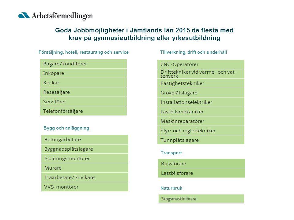 Försäljning, hotell, restaurang och service Transport Bygg och anläggning Tillverkning, drift och underhåll Naturbruk Goda Jobbmöjligheter i Jämtlands län 2015 de flesta med krav på gymnasieutbildning eller yrkesutbildning