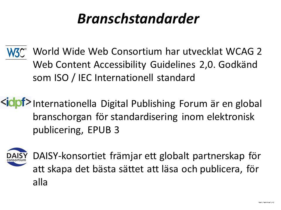 Branschstandarder World Wide Web Consortium har utvecklat WCAG 2 Web Content Accessibility Guidelines 2,0. Godkänd som ISO / IEC Internationell standa