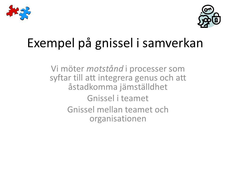 Exempel på gnissel i samverkan Vi möter motstånd i processer som syftar till att integrera genus och att åstadkomma jämställdhet Gnissel i teamet Gnissel mellan teamet och organisationen
