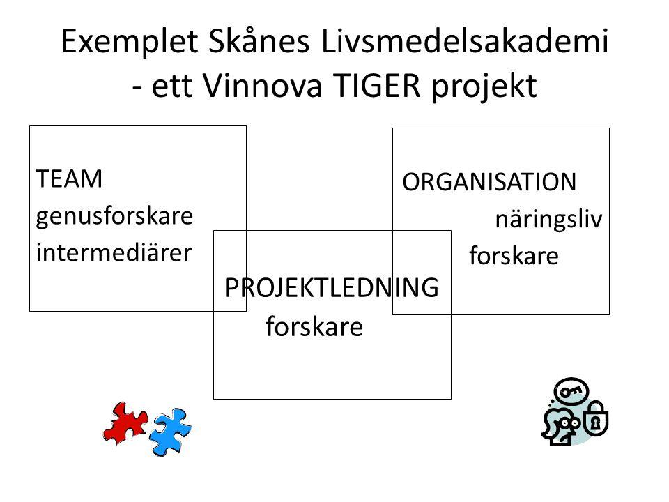 Exemplet Skånes Livsmedelsakademi - ett Vinnova TIGER projekt TEAM genusforskare intermediärer PROJEKTLEDNING forskare ORGANISATION näringsliv forskare
